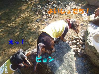 blogkawa40.jpg