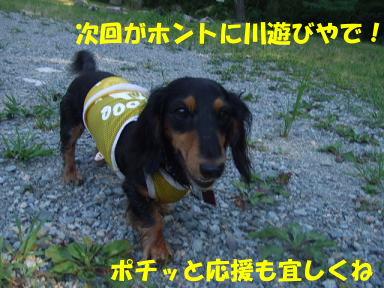blogkawa43.jpg