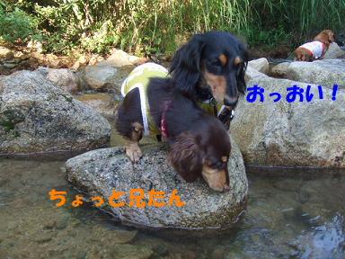 blogkawa47.jpg