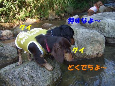 blogkawa48.jpg
