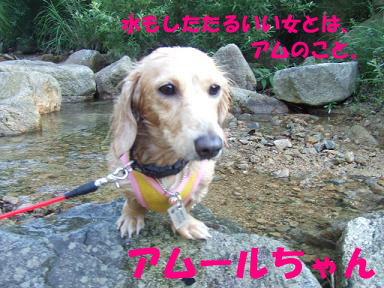 blogkawa49.jpg