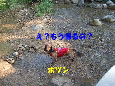 blogkawa52.jpg