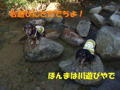 blogkawa58.jpg