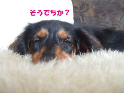 blogmenu10.jpg