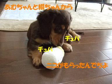 blogmiruku01.jpg