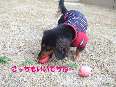 blogmone06.jpg