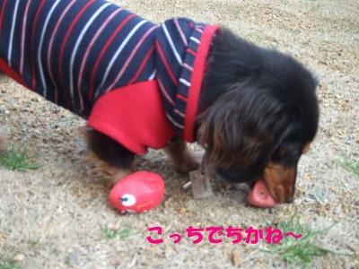 blogmone11.jpg