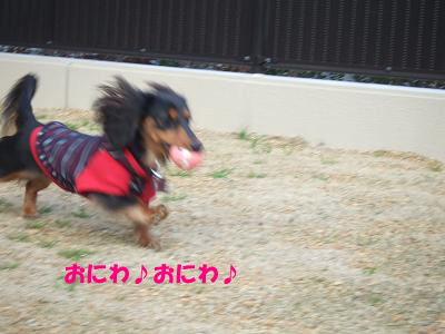 blogmone22.jpg