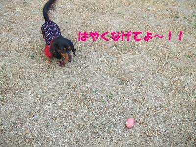 blogmone25.jpg