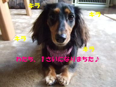 blogmoneBD01.jpg