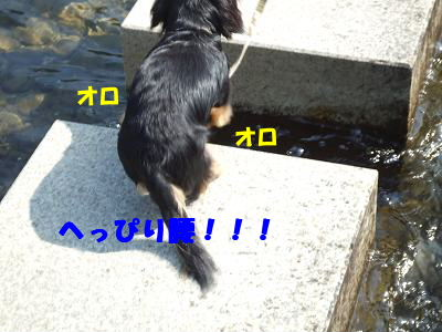 blogmori08.jpg