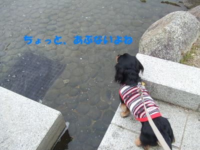 blognag07.jpg