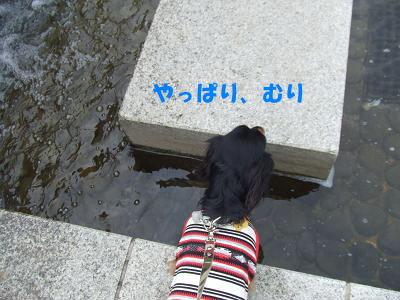 blognag08.jpg