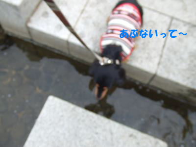 blognag09.jpg