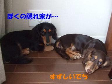 blognakayosi01.jpg