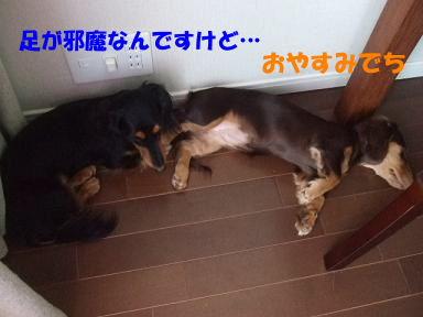 blognakayosi02.jpg
