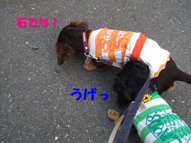 blognakayosi03.jpg
