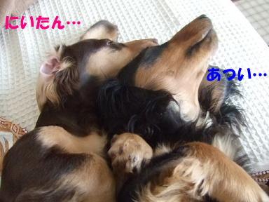 blognakayosi05.jpg