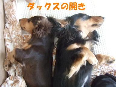 blognakayosi06.jpg