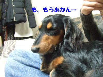 blognemu03.jpg