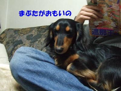 blognemu04.jpg