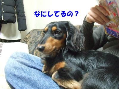 blognemu05.jpg