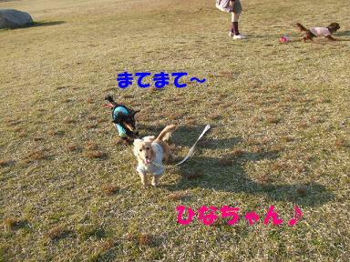 blogoffh33.jpg