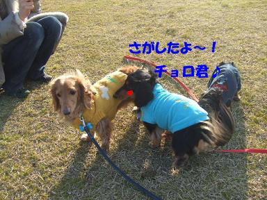 blogoffh39.jpg