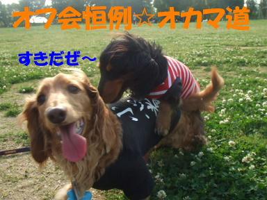 blogpdsanpo02.jpg