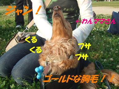 blogpdsanpo18.jpg