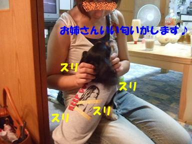 blogpl05.jpg