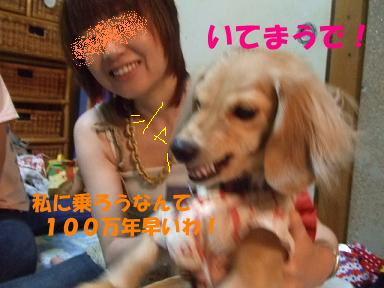 blogpl13.jpg