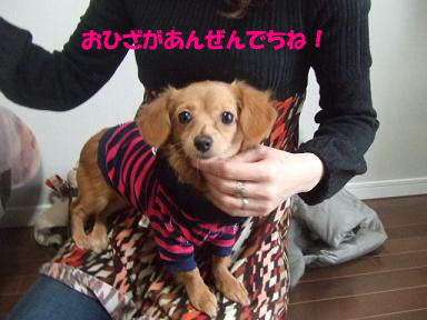 blogputi06.jpg