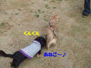 blogputi41.jpg