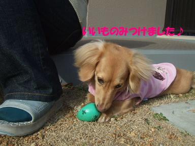 blogputi46.jpg