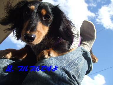 blogputi51.jpg