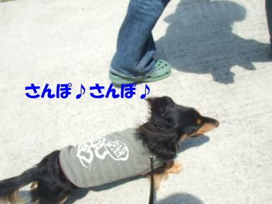 blogsanpo02.jpg