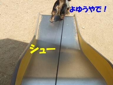 blogsanpo06.jpg