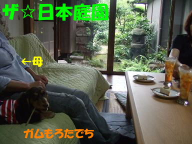blogsibata04.jpg