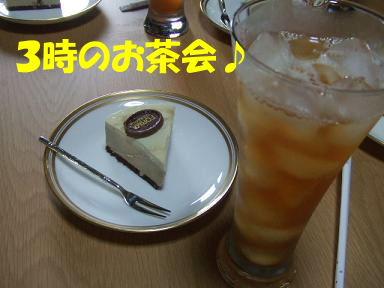blogsibata05.jpg