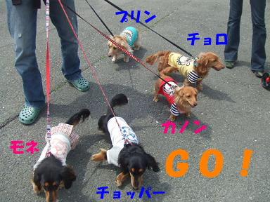 blogturumi04.jpg