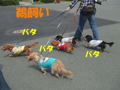 blogturumi07.jpg