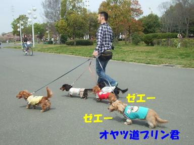blogturumi08.jpg