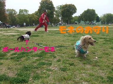 blogturumi09.jpg
