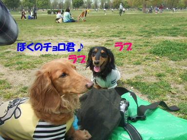 blogturumi12.jpg