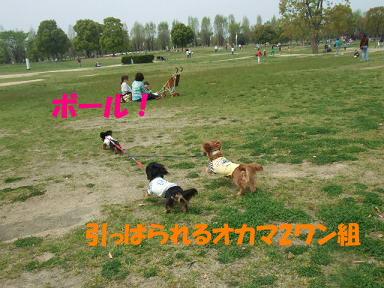 blogturumi14.jpg