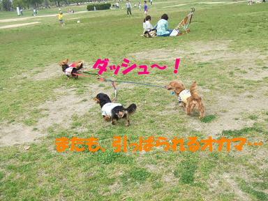 blogturumi17.jpg