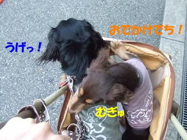 bloguge01.jpg