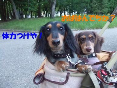 bloguge08.jpg