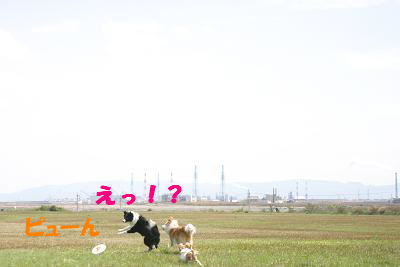 blogumi07.jpg